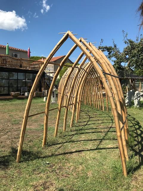 Début de l'arche en bambou