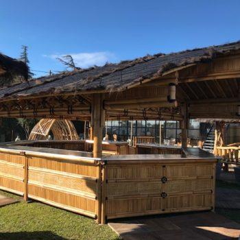 Grand bar en bambou pour les professionnels