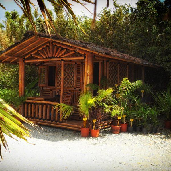 Maison en bambou dans parc exotique